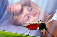 Вакцинация путешественников
