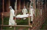 Лихорадки Эбола и Марбург. Фото с сайта www.healthineurope.tv