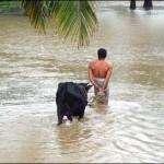 Udyavar River Floods (29)