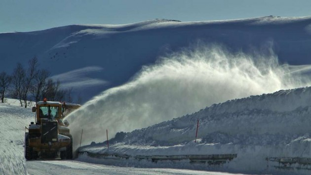 Letnij snegopad v Norvegii (10)
