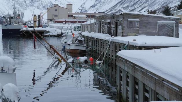 Letnij snegopad v Norvegii (11)