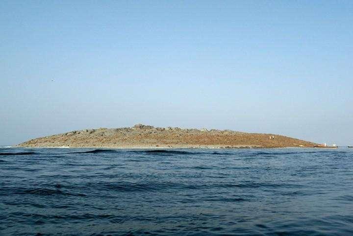 novyj ostrov v Pakistane (1)